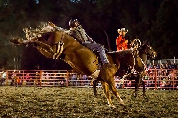 Bareback Riding