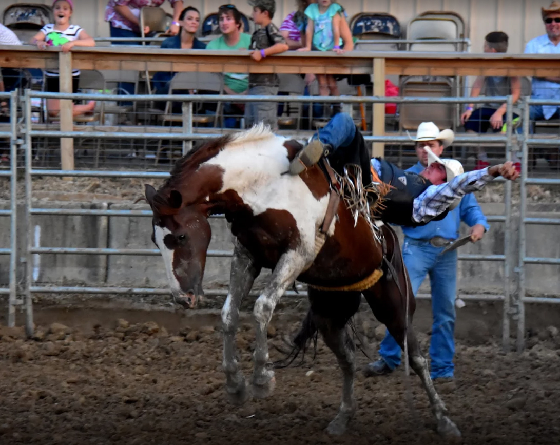 marshall-putnam county fair pro rodeo in henry  il